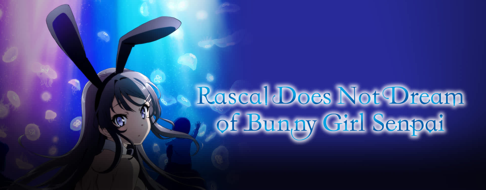 Watch Rascal Does Not Dream Of Bunny Girl Senpai Sub Comedy