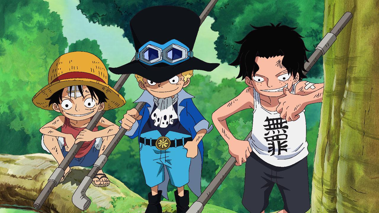 Watch One Piece Season 8 Episode 496 Sub & Dub   Anime ...